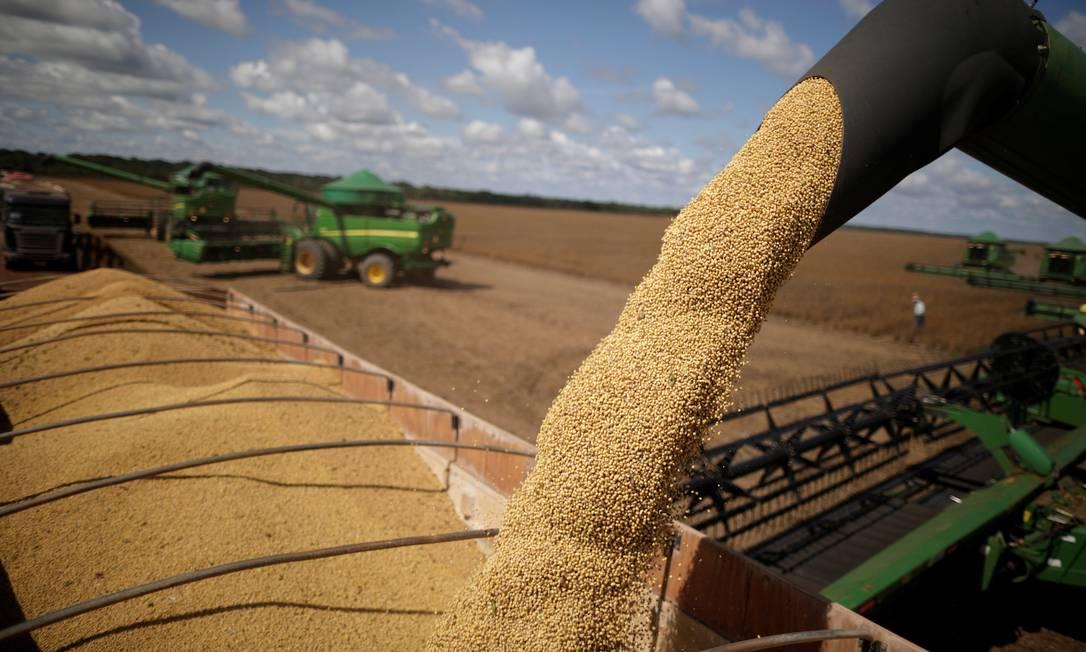 Colheita de grãos em lavoura brasileira Foto: UESLEI MARCELINO / Agência O Globo