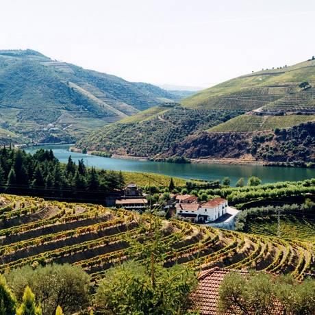 O Rio Douro é o elemento distintivo de toda a paisagem vinhateira Foto: Divulgação