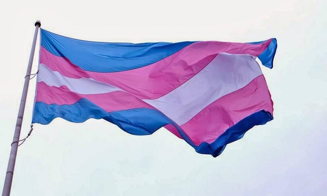 Bandeira do orgulho trans Foto: Reprodução
