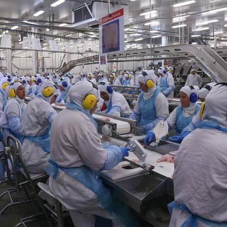 Linha de produção da fábrica da processamento de aves da JBS em Lapa, no Paraná Foto: André Coelho/21-3-2017