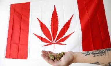 Um homem segura um punhado de cannabis em frente a uma bandeira modificada do Canadá, com a imagem de uma folha da planta Foto: CHRIS WATTIE / REUTERS