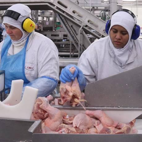 Produção de frangos em fábrica da JBS: exportação do produto recuou 8,5% entre janeiro e maio Foto: André Coelho / Agência O Globo