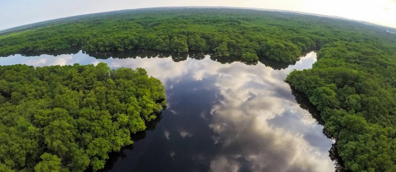 Trecho peruano da Amazônia: florestas tropicais registraram maior perda de áreas verdes Foto: Divulgação/Ministério do Meio Ambiente do Equador