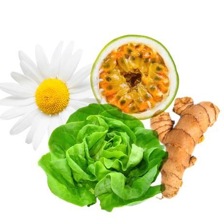 Alimentos que acalmam Foto: Montahem