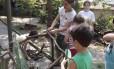 Natureza. Crianças se divertem com recreadora no Quintal Brincante