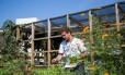 O engenheiro ambiental Fabio Mehlem coordena a Horta das Artes