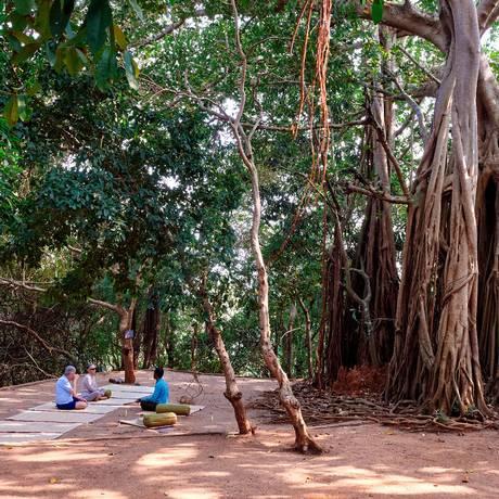 Prática de ioga no resort SwaSwara em Gokarna, na Índia Foto: Poras Chaudhary