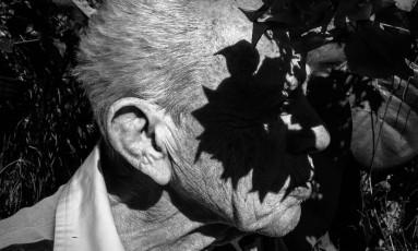 """Obra da exposição """"Jardim de Maria"""", de Pedro Kuperman, que será inaugurada dia 31 Foto: Divulgação"""