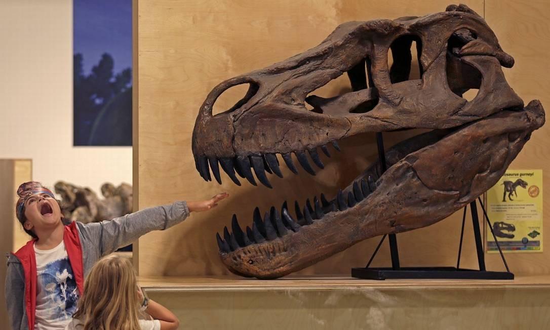 O parque conta com um museu, onde, claro, as crianças também se divertem com os fósseis e suas réplicas Foto: JOSE MANUEL RIBEIRO / AFP
