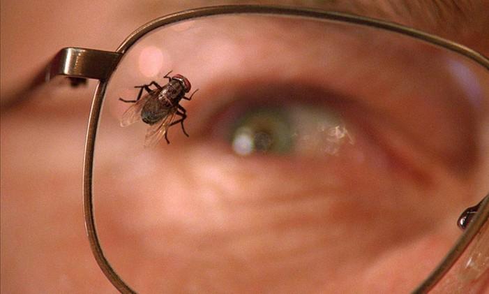 """Cena de """"Fly"""", de Breaking Bad Foto: Reprodução"""