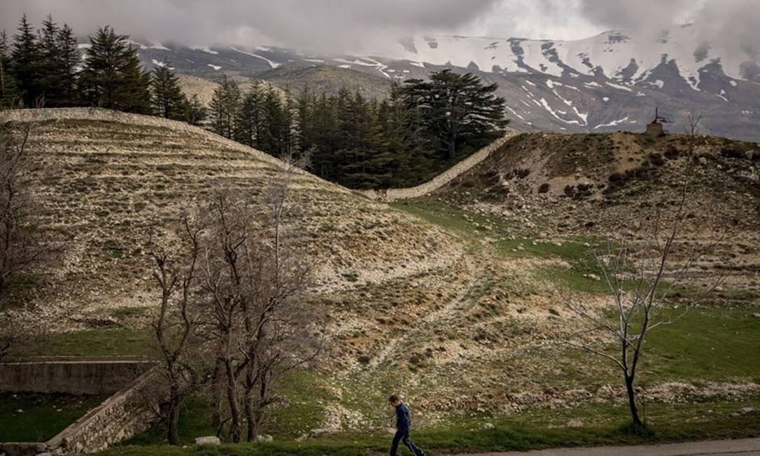 Menino caminha pelos chamados Cedros de Deus, no Líbano Foto: John Haner/The New York Times