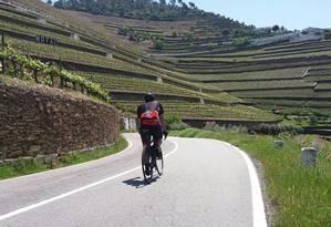 Tour de bicicleta por região vinícola Foto: Live Love Ride/Reprodução