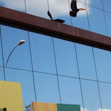 Tucano aparece na entrada da convenção da Rede Foto: Jorge William / Agência O Globo
