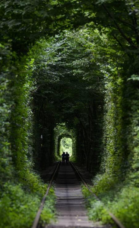 O túnel é na verdade um trecho de cinco quilômetros de extensão de uma ferrovia privada que corta um bosque. Um fenômeno botânico fez com que a vegetação crescesse no formato do trem, que passa três vezes ao dia Foto: SERGEI SUPINSKY / AFP