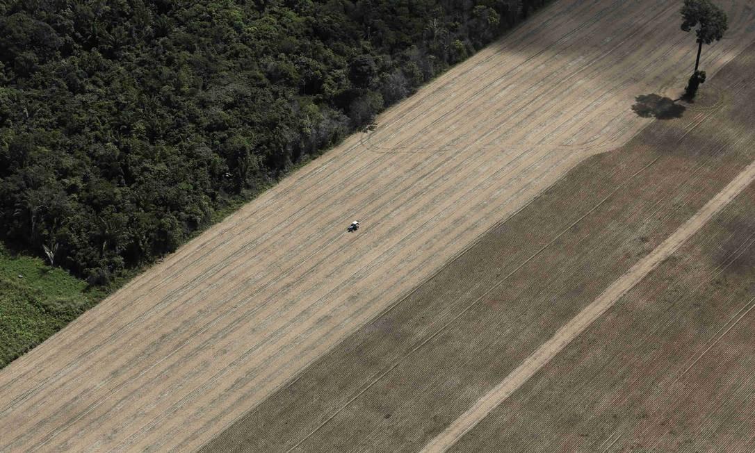 Estudo relaciona paraísos fiscais com o desmatamento da Amazônia