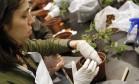 Oficina do Rio Gastronomia ensina a fazer horta em casa Foto: Nelson Perez/Luminapress / Agência O Globo