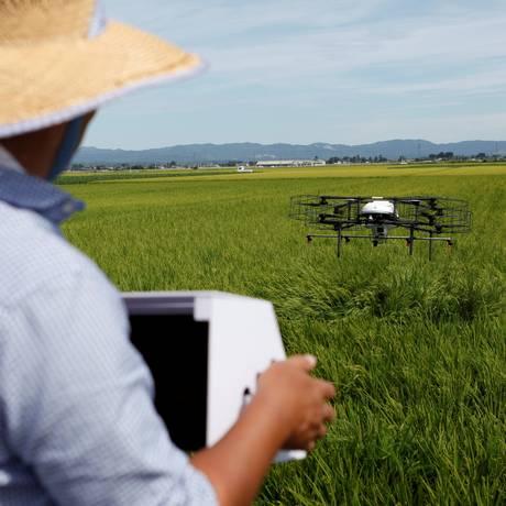 Um drone da Nileworks Inc. sobrevoa uma plantação de arroz, pulverizando pesticida, durante uma demonstração na cidade de Tome Foto: YUKA OBAYASHI / REUTERS
