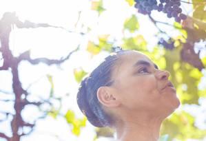 Marina Silva visita fazenda em Goiás Foto: Daniel Marenco / Agência O Globo