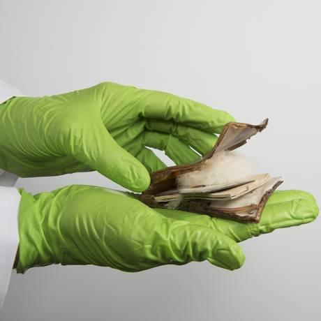 Odile Madden segura caixa de maquiagem de plástico já em avançada degradação: conservação de obras de arte e artefatos históricos feitos com o material é um desafio Foto: NYT/MELISSA LYTTLE