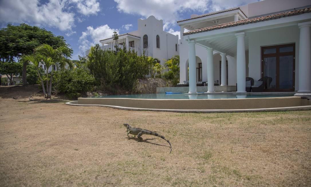 Iguanas, tradicionais na ilha, repartem com o visitante os jardins dos hotéis. Na foto, uma vila do hotel Belmond La Samanna em St. Martin Foto: Paulo Moreira / Agência O Globo