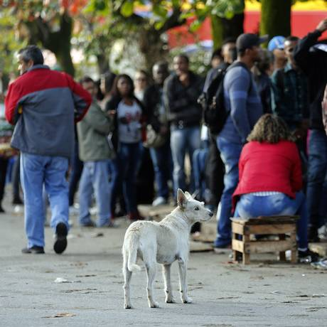 Fila para uma vaga de emprego no Rio Foto: Marcos de Paula / Agência O Globo