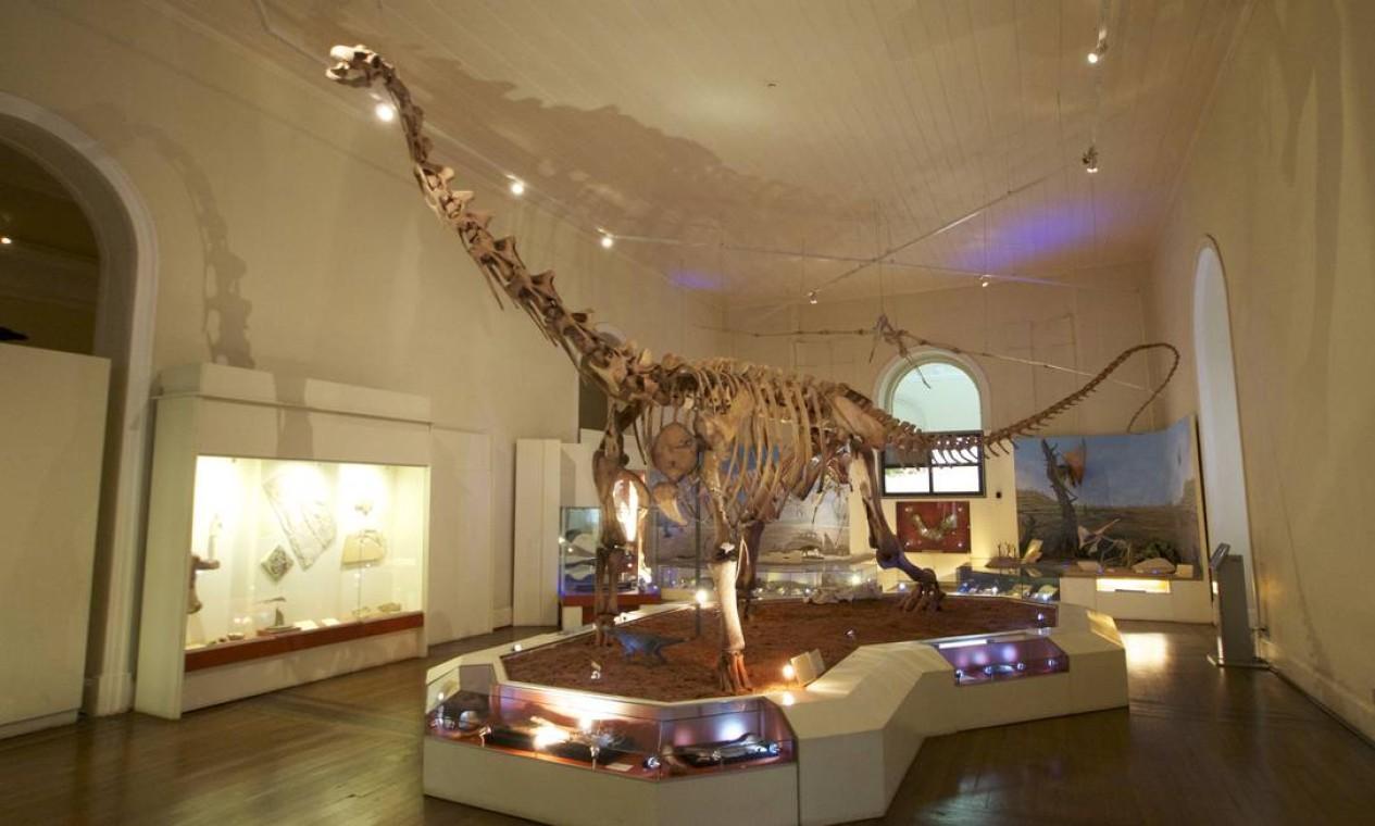 O acervo no museu incluía uma das maiores coleções do país de paleontologia Foto: Domingos Peixoto / 30/05/2018
