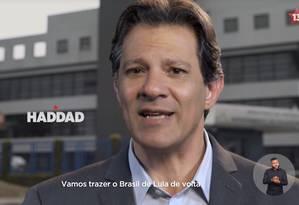 Fernando Haddad aparece em propaganda do PT Foto: Reprodução