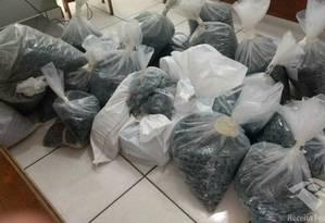 Meia tonelada de esmeraldas foi apreendida na Bahia Foto: Reprodução / Receita Federal