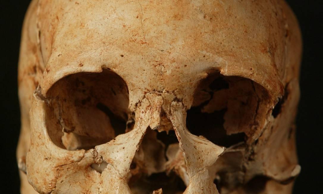 O crânio de Luzia, que estava no Museu Nacional: fragmentos encontrados serão submetidos a exame Foto: Marizilda Cruppe / Agência O Globo - 03/07/2003