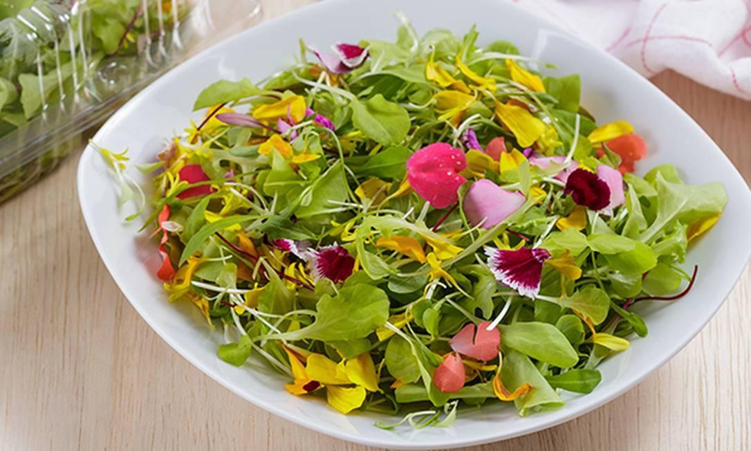 Salada de flores e brotos: Orgânicos da Fátima Foto: Divulgação