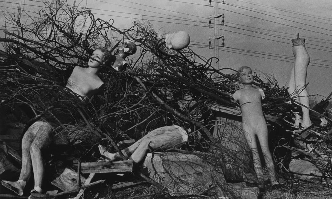 MAM 70: MAM e MAC USP (MAM) — Celebrando seus 70 anos, o Museu de Arte Moderna de São Paulo, em parceria com o Museu de Arte Contemporânea da USP, selecionou 103 obras de nomes como Volpi, Cildo Meireles, Tunga e Anna Bella Geiger, além de artistas internacionais, como Joan Miró. Até 16/12 Divulgação