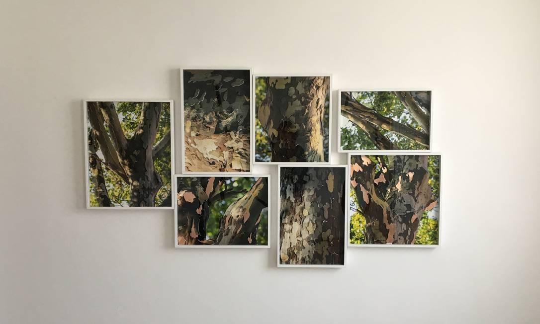 Trabalho da fotógrafa Alessandra Rehder entra em cartaz nos Correios Foto: Divulgação