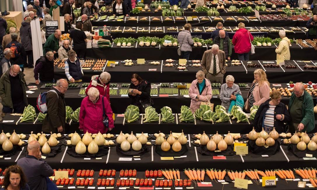 Pessoas admiram legumes inscritos no campeonato da National Vegetable Society, em Harrogate, norte da Inglaterra OLI SCARFF / AFP