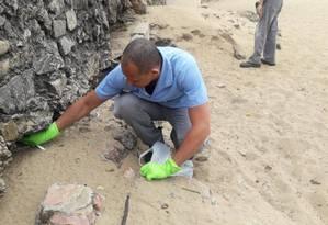 Técnicos da Comlurb espalham veneno de rato na Praia Vermelha Foto: Divulgação/Comlurb