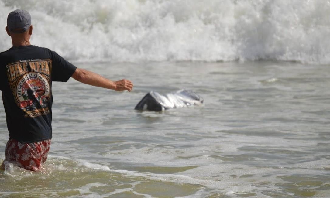 Pacotes de maconha começaram a aparecer em praias da Flórida após passagem de furacão Florence Foto: Divulgação/Gabinete do Xerife do Condado de Flagler