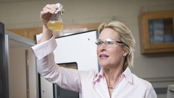 Frances Arnold em seu laboratório, no Instituto de Tecnologia da Califórnia Foto: AFP