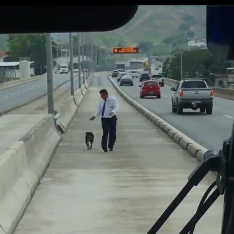 Motorista de BRT resgata cachorro que seria atropelado em corredor de via expressa Foto: Reprodução/Twitter