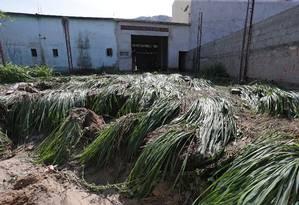 Lama e destruição por onde água que vazou do rompimento de uma tubulação da Cedae em Nova Iguaçu, na Baixada Foto: Marcio Alves / Agência O Globo