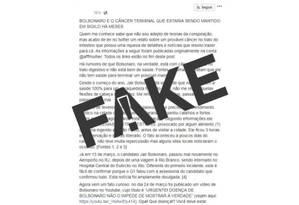Texto que levanta teoria sobre câncer de Bolsonaro Foto: Reprodução