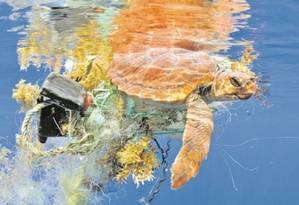 Tartaruga marinha envolta em lixo: poluição do mar preocupa legisladores europeus Foto: Sergio Hanquet/Biosphoto