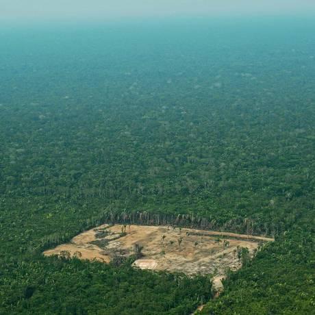 Valor intrínseco. Desmatamento na Amazônia: a própria biodiversidade da floresta é um dos serviços ambientais que geram mais valor que o lucro de curto prazo que estimula o avanço da agropecuária, segundo cálculos de economista Foto: CARL DE SOUZA / Carl de Souza/AFP/22-9-2017