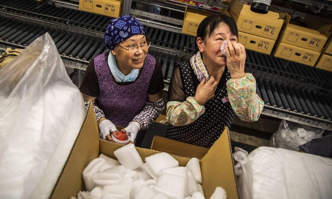 No Japão, frutas são produtos tão valiosos que são normalmente dados de presente. Na foto, lugar onde pêssegos são classificados, embalados e preparados para distribuição Foto: Bárbara Lopes / Agência O Globo