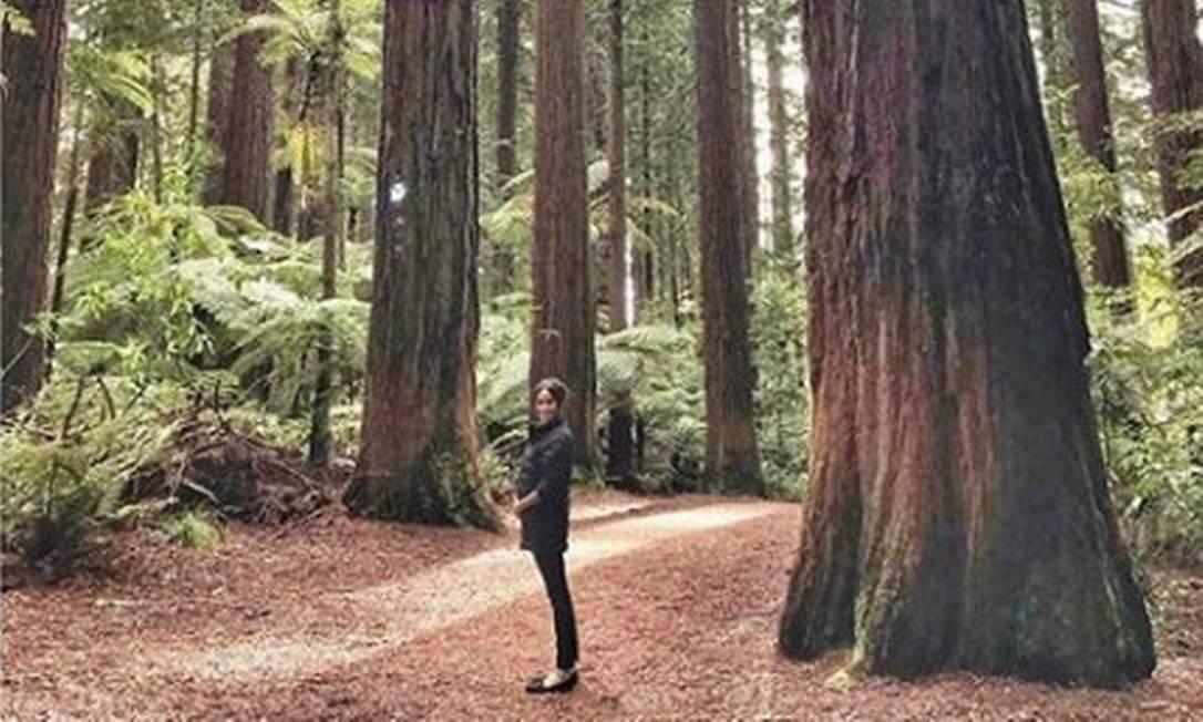 Meghan Markle posa para foto com mãos na barriga em bosque na Nova Zelândia Foto: Reprodução