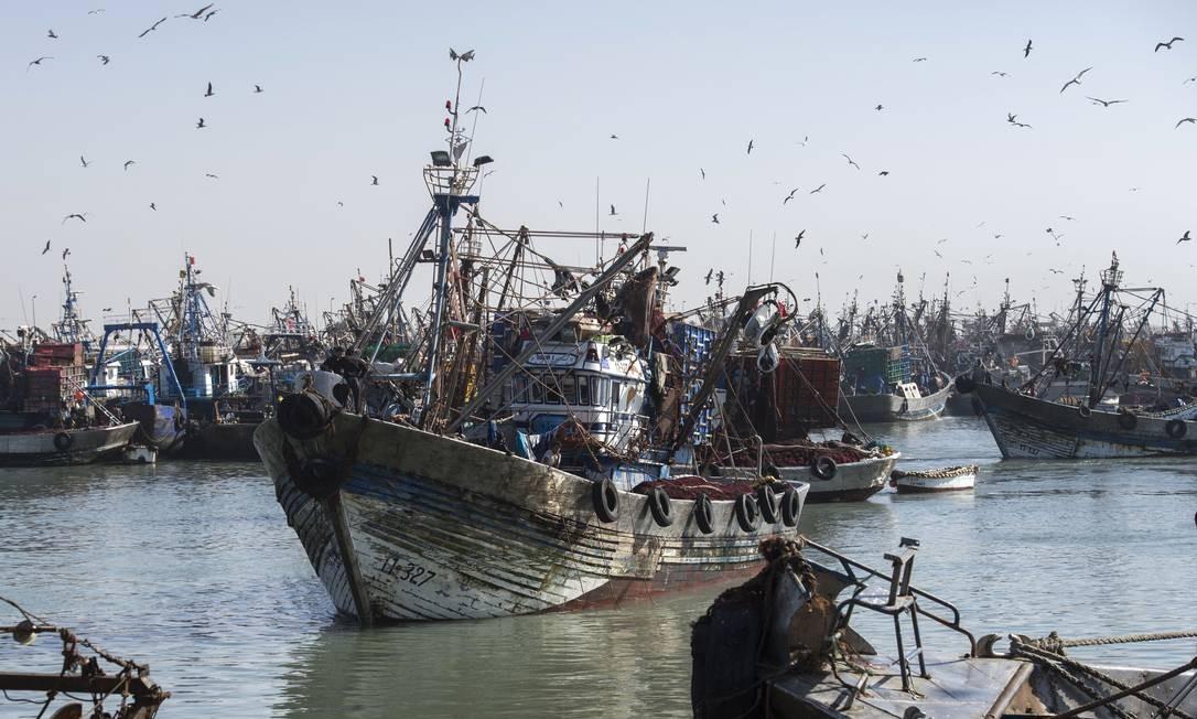 Barco de pesca entra no porto da principal cidade de Laayoune, no Saara Ocidental, controlada pelos marroquinos Foto: FADEL SENNA / AFP