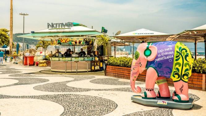 Os elefantes estão à solta Foto: Divulgação/Bruno Contrino