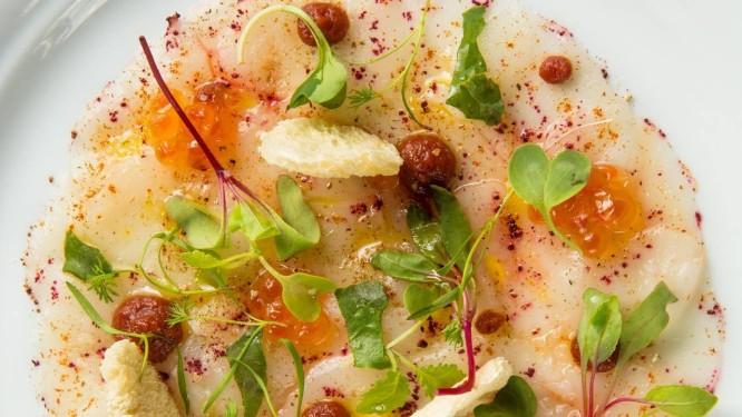 Fasano Al Mare. O carpaccio de vieiras com ovas de salmão, azeitonas e tomates sai a R$ 88 Foto: Divulgação/Lipe Borges