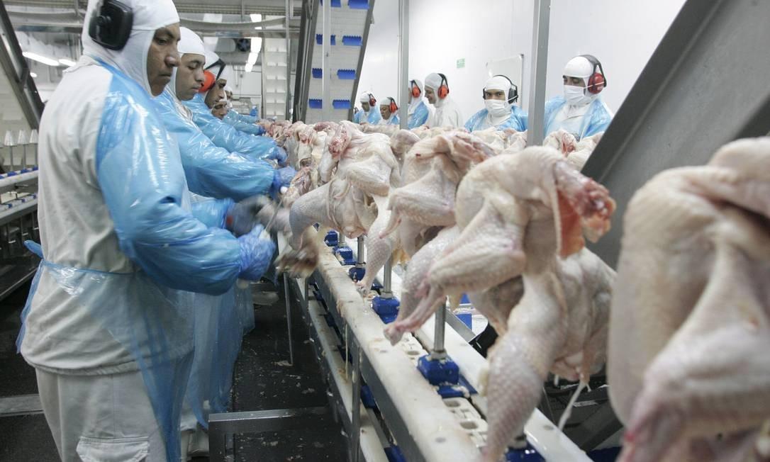 Trabalhadores manuseiam frangos em chão de fábrica Brasil ameaça ir à OMC contra Filipinas Foto: Agência O Globo