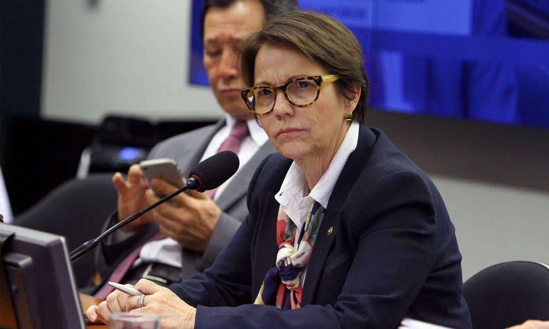 A deputada federal Tereza Cristina (DEM-MS) Foto: Vinicius Loures/Câmara dos Deputados/20-06-2018