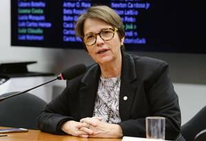 A deputada federal Tereza Cristina (DEM-MS) Foto: Michel Jesus/Câmara dos Deputados/13-06-2018
