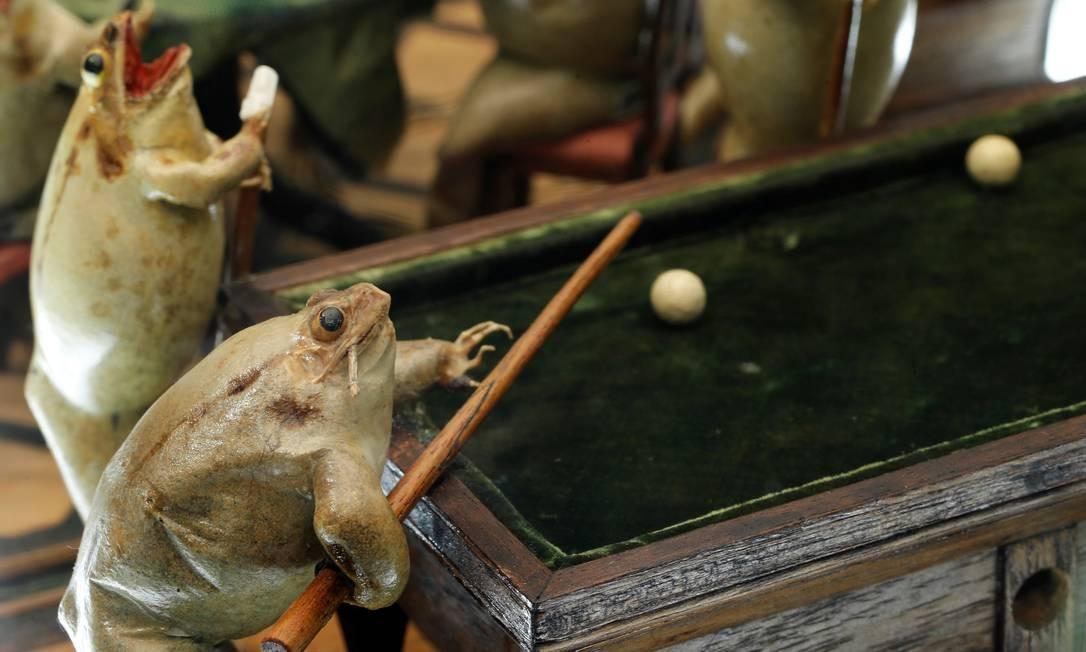 Sapos durante um partida de sinuca no Museu do Sapo Denis Balibouse / REUTERS